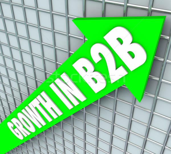 Growth in B2B Sales Business Company Selling Products Stock photo © iqoncept