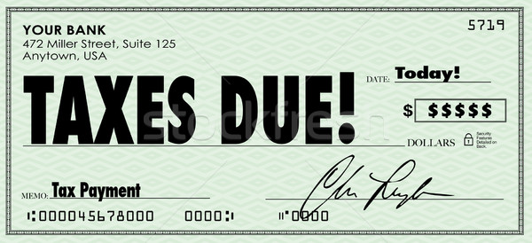 Taxes Due Check Money Send Payment Income Revenue Stock photo © iqoncept