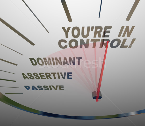 You're in Control Speedometer Agressive and Assertive Stock photo © iqoncept