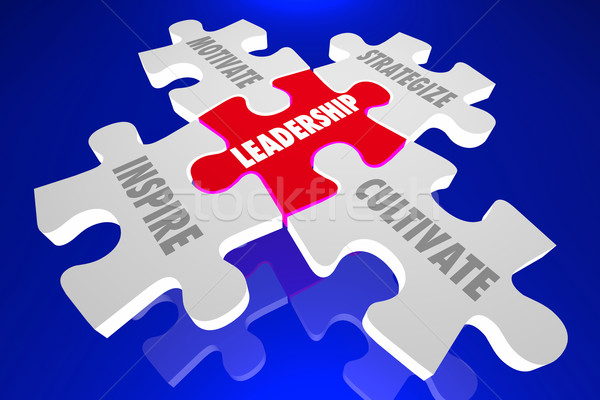 Leadership Inspire Motivate Manage Cultivate Puzzle Words 3d Ill Stock photo © iqoncept