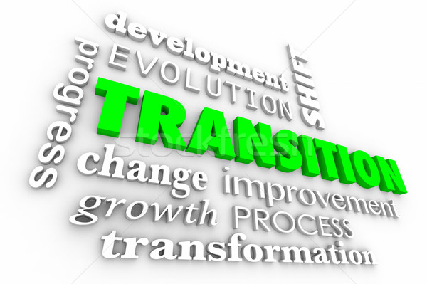 Transition Change Evolution Process Word Collage 3d Illustration Stock photo © iqoncept