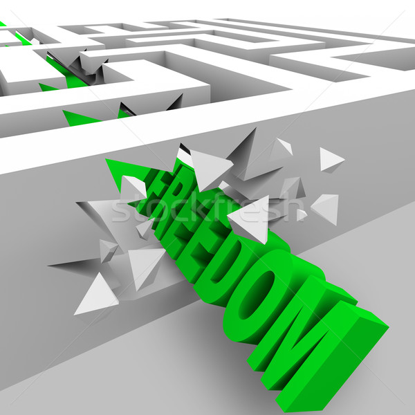 Freedom - Green Word Breaks Through Maze Walls Stock photo © iqoncept