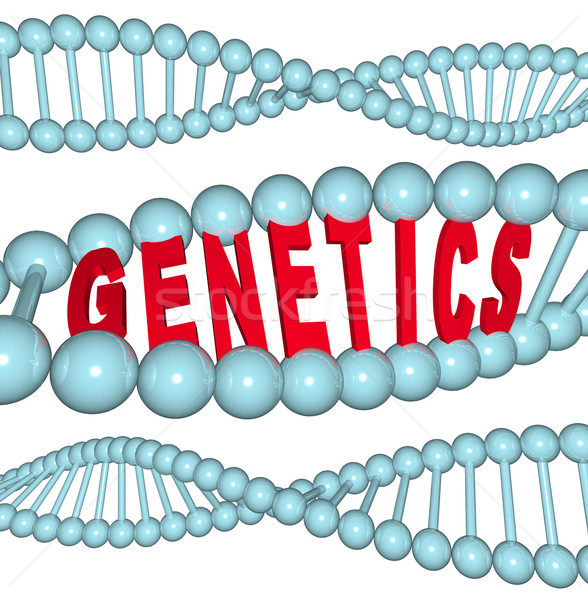 Genetics - Word in DNA Stock photo © iqoncept