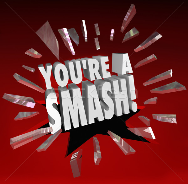 You're a Smash Hit Popular Big Success Feedback Praise Stock photo © iqoncept