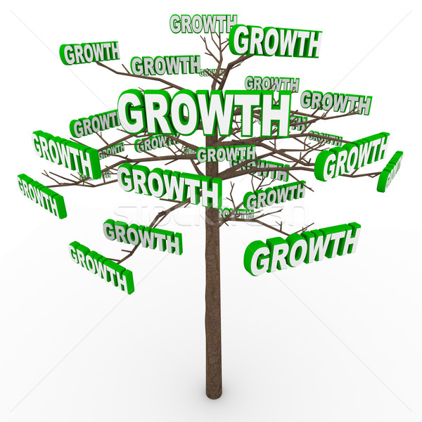 Growth Tree - Words on Branches Symbolize Organic Growing Stock photo © iqoncept