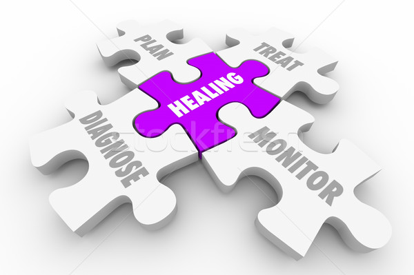 Healing Diagnosis Treatment Wellness Puzzle 3d Illustration Stock photo © iqoncept