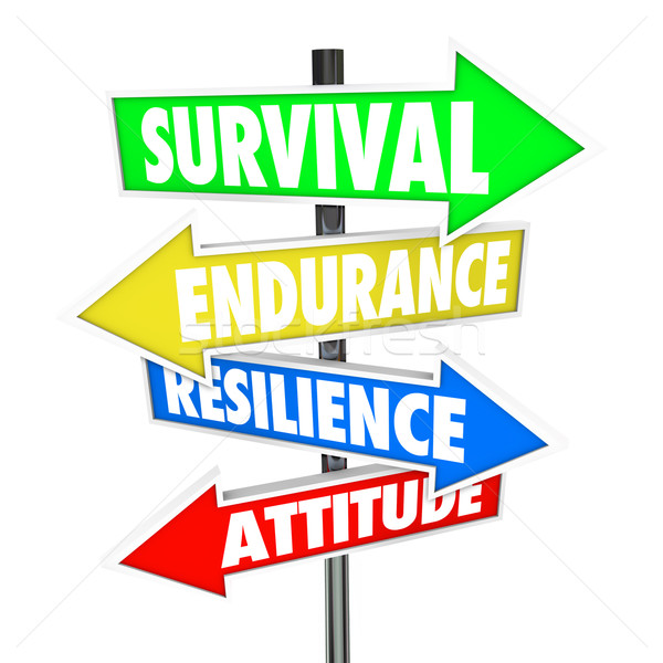 Survival Endurance Resilience Attitude road signs arrows directi Stock photo © iqoncept