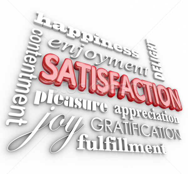 Satisfaction 3d Word Collage Happiness Enjoyment Customer Servic Stock photo © iqoncept
