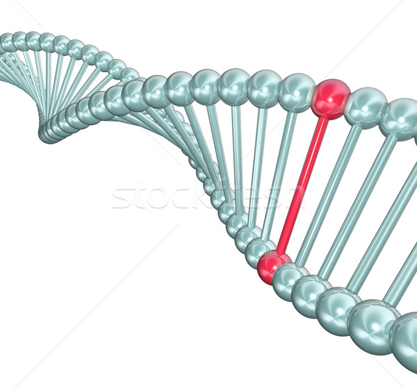 Dna Helix Illustration ein unterschiedlich Double Stock foto © iqoncept
