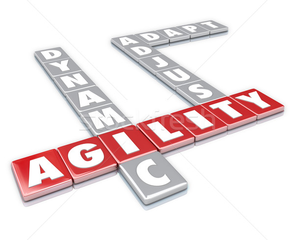 Agility Word Letter Tiles Dynamic Adapt Adjust Stock photo © iqoncept