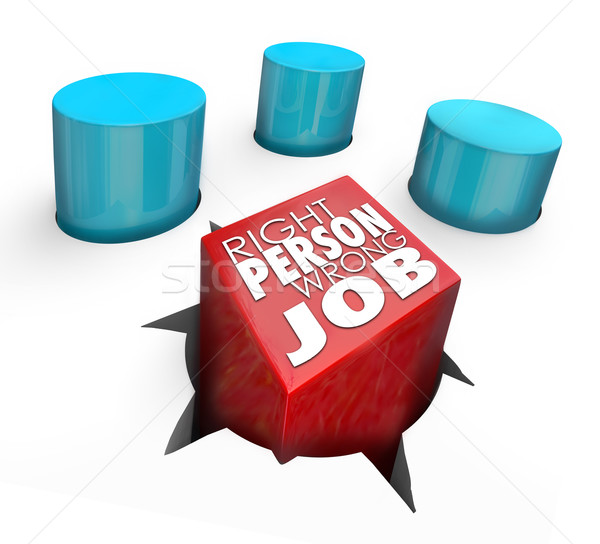 Right Person Wrong Job Square Peg Round Hole Bad Hire Stock photo © iqoncept