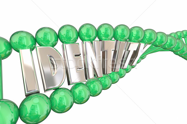 Identity DNA Word Self Internal Heredity 3d Illustration Stock photo © iqoncept
