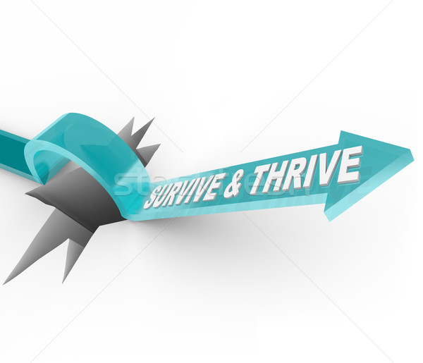 Survive and Thrive - Arrow Jumps Over Hole Stock photo © iqoncept