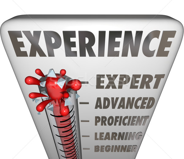 Experience Measurement Expert to Novice Level Stock photo © iqoncept