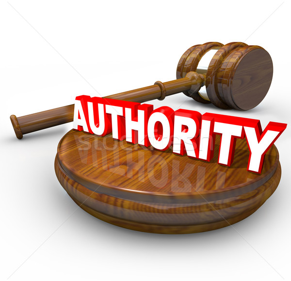 Authority - Judge Gavel and Word for Person in Command Stock photo © iqoncept
