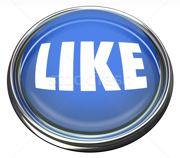 Like Blue Button Approval or Positive Review Stock photo © iqoncept