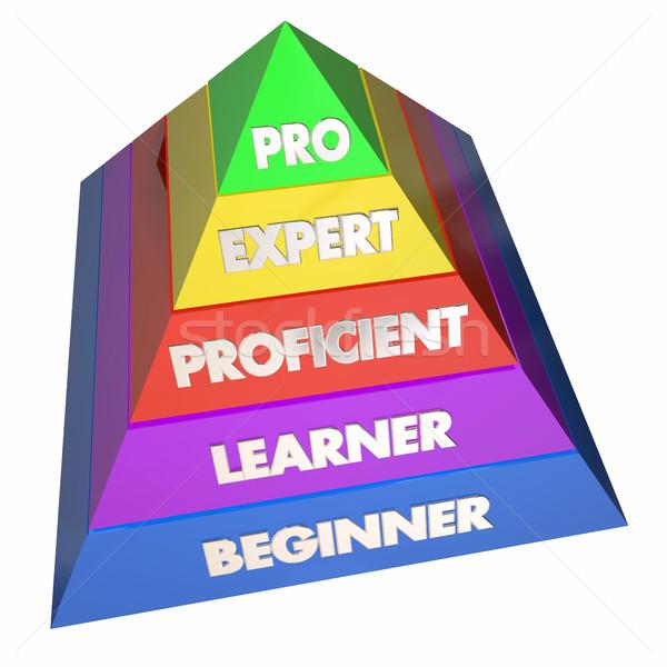 Professionali esperto esperienza piramide illustrazione 3d studente Foto d'archivio © iqoncept