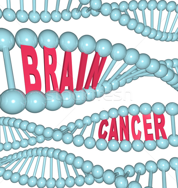 Brain Cancer Words in DNA Strand Stock photo © iqoncept
