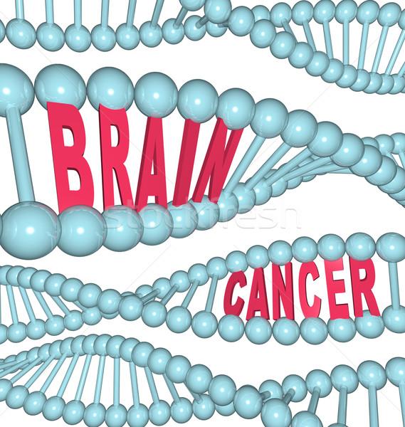 Mózgu raka słowa DNA ilustrowany łańcucha Zdjęcia stock © iqoncept