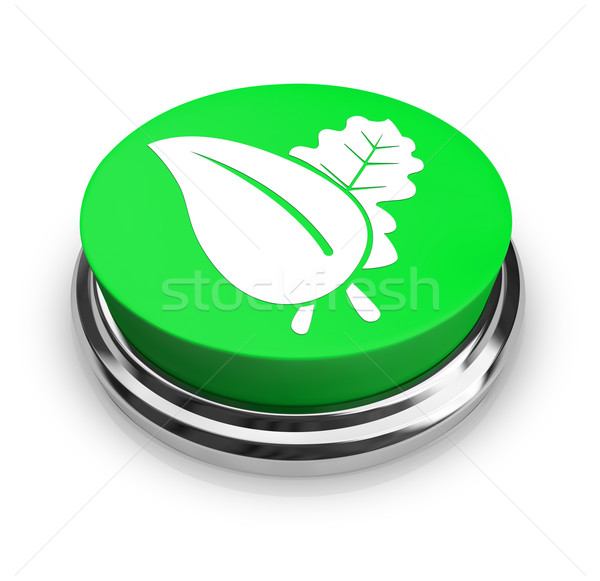 Foto stock: Folha · verde · botão · verde · dois · folhas · negócio