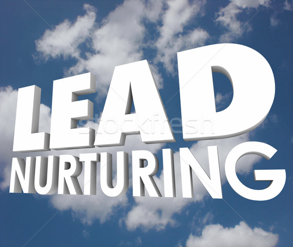 Lead Nurturing Cloud Sales Process 3d Words Prospects Customers Stock photo © iqoncept