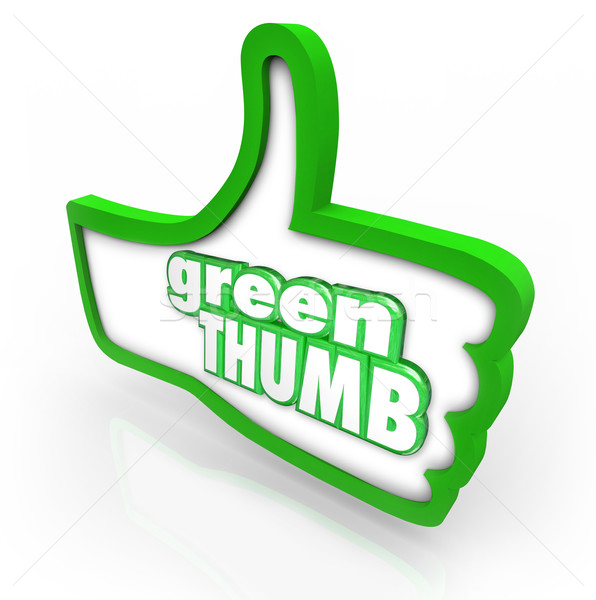 Green Thumb Words Gardener Cultivate Farming Stock photo © iqoncept