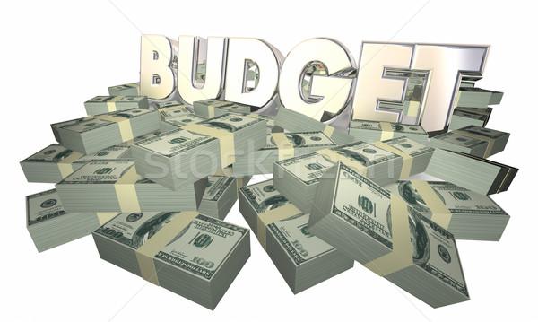 Budgétaire argent trésorerie mot 3d illustration Photo stock © iqoncept