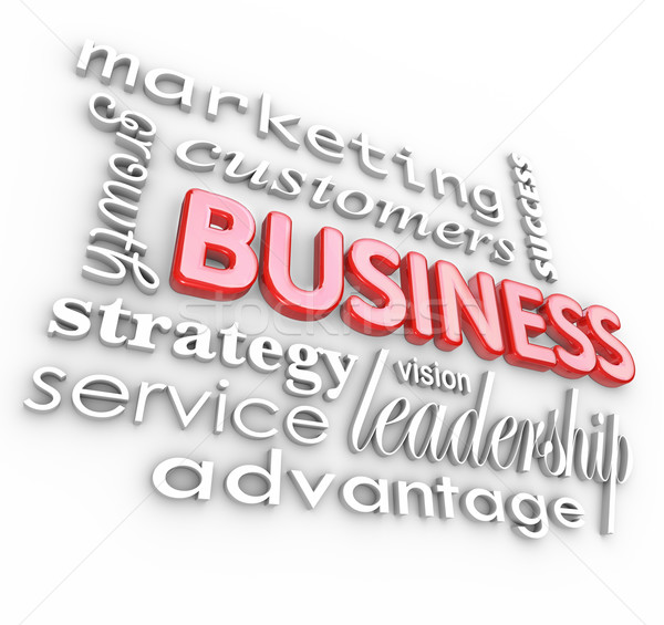 Stock photo: Business Concepts Principles 3D Words Background