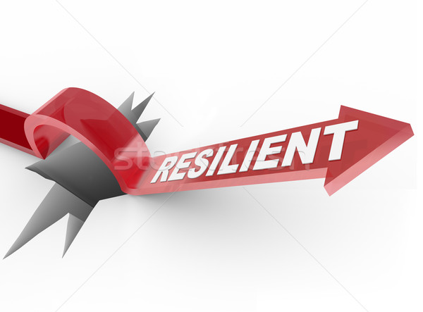 Resilient - Rising to Challenge and Overcoming a Problem Stock photo © iqoncept