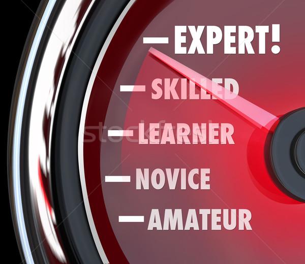 Expert snelheidsmeter niveau Stockfoto © iqoncept