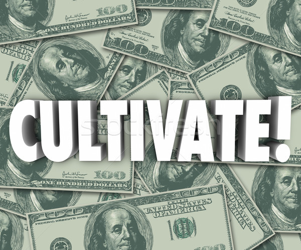 Cultivate Word 3d Letters Money Background Grow Wealth Stock photo © iqoncept