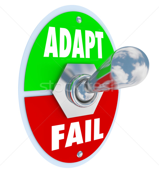 Adapt Vs Fail Words Toggle Switch Success Life Career Change Stock photo © iqoncept