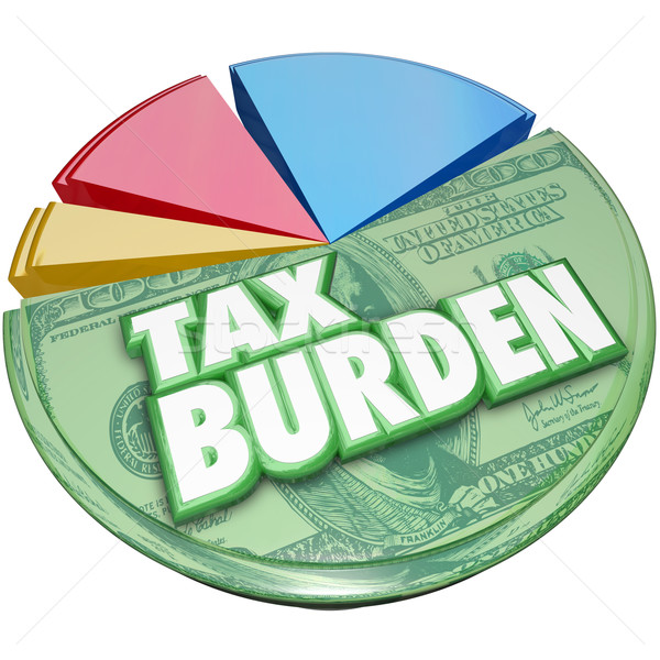 Tax Burden Money Owed Government Pie Chart Payment Stock photo © iqoncept