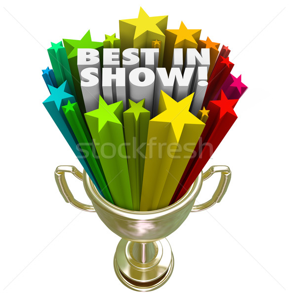 Best in Show Trophy Award Top Performer Winner Prize Stock photo © iqoncept
