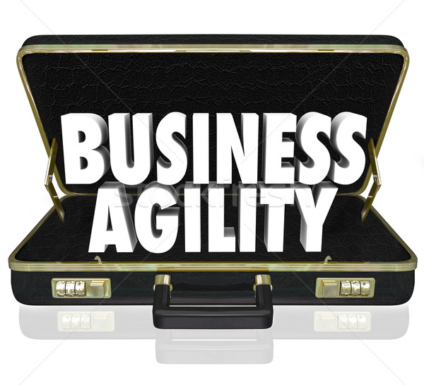 Business Agility Words Briefcase Fast Change Adaptation Stock photo © iqoncept