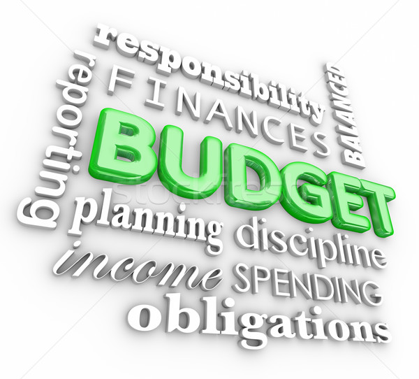 Budget 3D woord collage planning Stockfoto © iqoncept