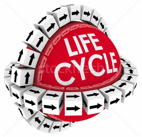 Lifecycle Product Process System Diagram Life Span Cycle TIme Stock photo © iqoncept