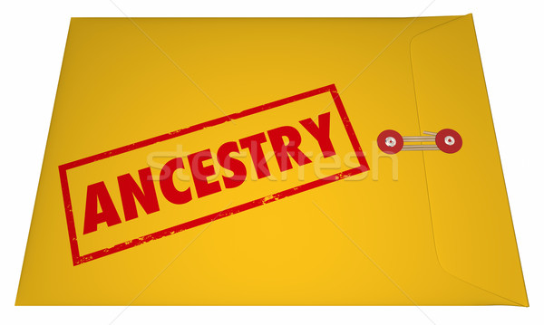 Ancestry Family History Research Documents Envelope 3D Stock photo © iqoncept