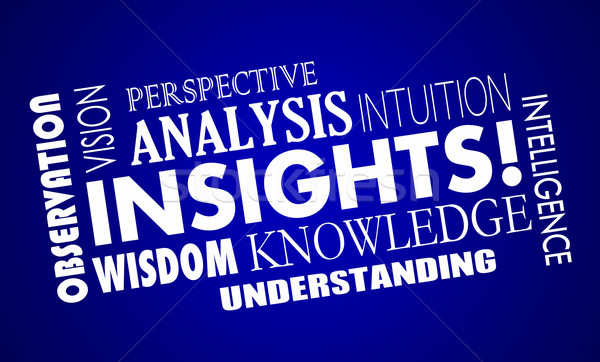 Insights Knowledge Intelligence Analysis Word Collage 3d Illustr Stock photo © iqoncept