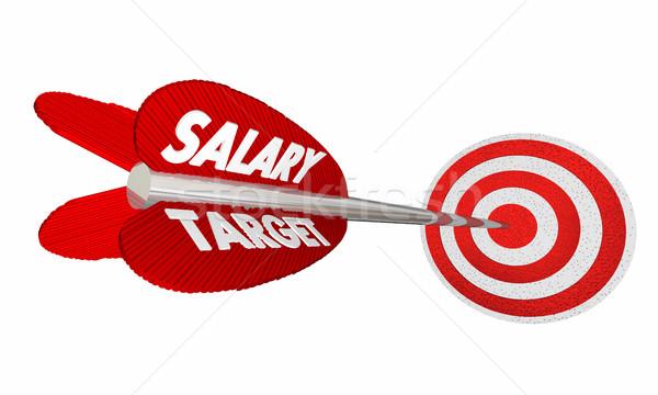 Salario objetivo salario ingresos ganancias flecha Foto stock © iqoncept