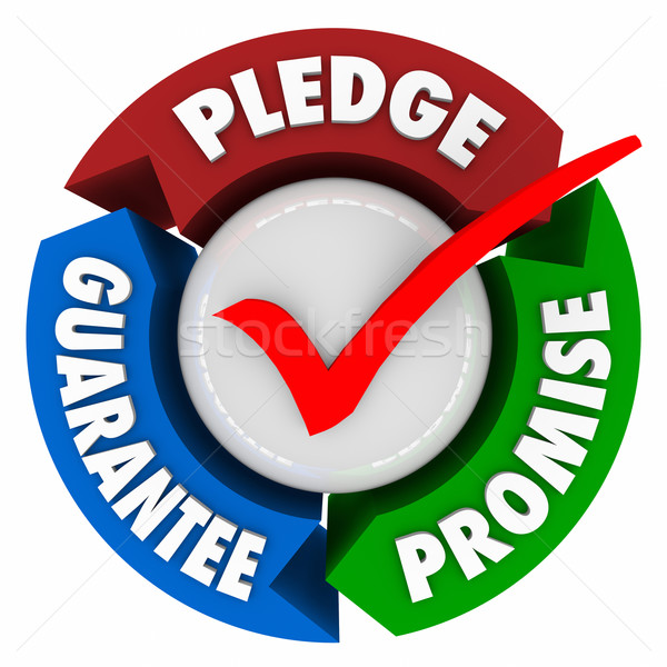 Pledge Promise Guarantee Vow Assurance Check Mark Stock photo © iqoncept