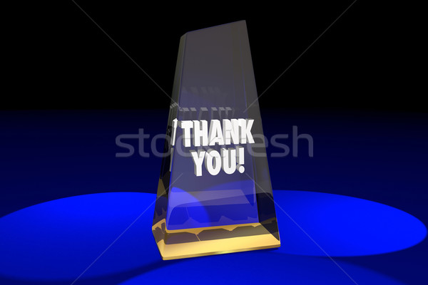 Thank You Appreciation Recognition Award Words 3d Illustration Stock photo © iqoncept