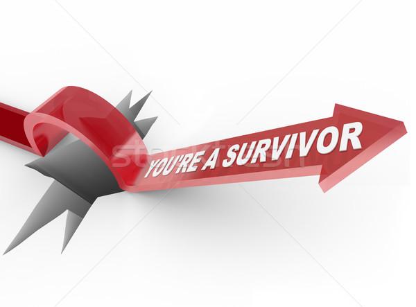 Overlevende pijl springen gat woorden vermogen Stockfoto © iqoncept