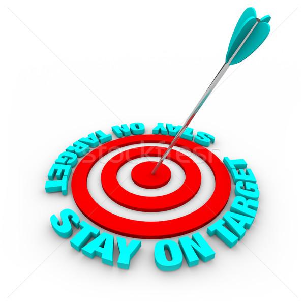 Pobyt cel arrow czerwony pierścienie Zdjęcia stock © iqoncept