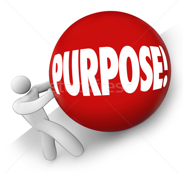 Purpose Ball Rolling Uphill Goal Mission Objective in Life Caree Stock photo © iqoncept