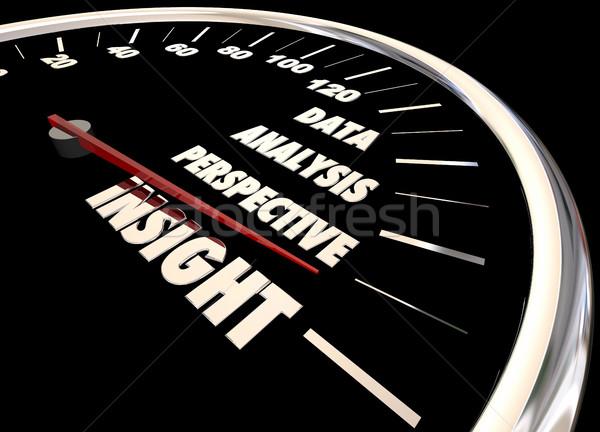 Wgląd analiza informacji danych perspektywy prędkościomierza Zdjęcia stock © iqoncept
