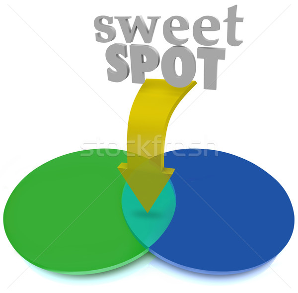 Sweet Spot Overlapping Venn Diagram Area Perfect Ideal Stock photo © iqoncept