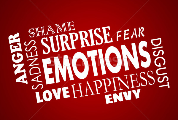 Emotions Happiness Sadess Anger Love Word Collage Stock photo © iqoncept