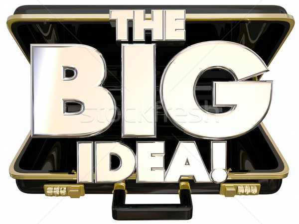 The Big Idea Concept Proposal 3d Words Briefcase Opening Stock photo © iqoncept