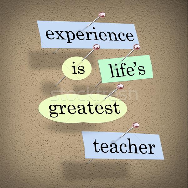 Tapasztalat legnagyszerűbb tanár élet oktatás darabok Stock fotó © iqoncept